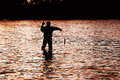 Silhouette of a fisherman pulling a fish Royalty Free Stock Photos