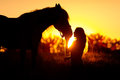 Silhouette of girl and horse Royalty Free Stock Photo