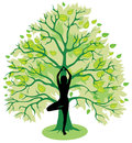 Silhouette girl standing tree yoga pose Stock Photos