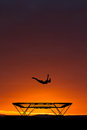 Silhouette of gymnast on trampoline in sunset Stock Photography