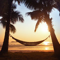 Silhouette of hammock and palm trees on the beach Royalty Free Stock Images