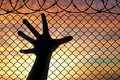 Silhouette hands refugee near the fence of barbed wire