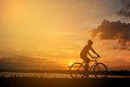 Silhouette of happy women with bicycle Royalty Free Stock Photo