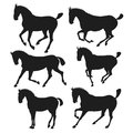 Silhouette of horses. vector illustration Royalty Free Stock Photo