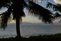 Silhouette of Palm Tree Against Ocean and Sky Royalty Free Stock Photo