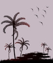 Silhouette palm trees and bird vector illustration Royalty Free Stock Images