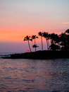 Silhouette of Palm Trees at Sunset Hawaii Royalty Free Stock Photo