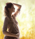 Silhouette picture of pregnant beautiful woman family motherhood and pregnancy concept backlight touching her belly Royalty Free Stock Images