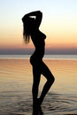 Silhouette of a sexy girl Stock Images