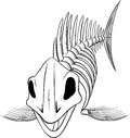 Silhouette skeleton fish detailed head to the viewer isolated on white background Royalty Free Stock Photography
