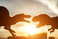 Silhouette of spinosaurus and tyrannosaurus with buildings in far end in sunset Royalty Free Stock Photo