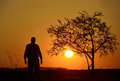 Silhouette of a tree and a man in sunset background people walking beside at Royalty Free Stock Photography