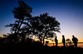 Silhouette tree men sunset Royalty Free Stock Photos