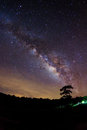 Silhouette of Tree and Milky Way. Long exposure photograph Royalty Free Stock Photo
