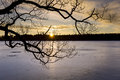 Silhouette of tree over frozen lake at sunset Royalty Free Stock Photo