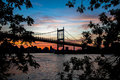 Silhouette of Triborough bridge over the river and buildings behind the branches with sunset sky Royalty Free Stock Photo