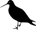 Silhouette of wader on white background Stock Photography