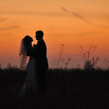 Silhouette of wedding couple in field bride and groom together Royalty Free Stock Photo
