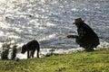 Silhouette woman & pet dog walking by lake Royalty Free Stock Photo