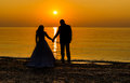 Silhouette of young marriages Royalty Free Stock Photo