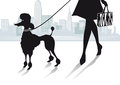 Silhouetted woman walking poodle with city skyline in background Royalty Free Stock Image