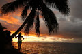 Silhouetted young woman by the palm tree on a beach, Vanua Levu Stock Images