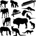Silhouettes of animals Royalty Free Stock Photo