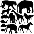 Silhouettes of animals set with Royalty Free Stock Image