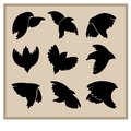 Silhouettes of birds for graphic design