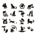 Silhouettes of cat author s illustration in Stock Images