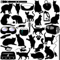 Silhouettes of Cats, Kittens Stock Images