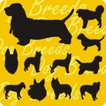Silhouettes of dogs vector set dog breeds vinyl ready illustration Stock Photos