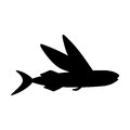 Silhouettes of fish isolated black and white vector illustration