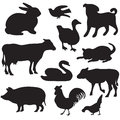Silhouettes of hand drawn farm animals. Dog, cat, duck, rabbit, cow, pig, cock, hen, swan, puppy, kitten. Royalty Free Stock Images