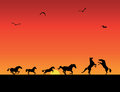 Silhouettes of horses, sunset Royalty Free Stock Photo