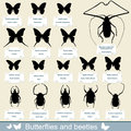 Silhouettes of insects - beetles and butterflies Stock Images