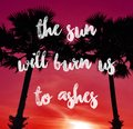 Silhouettes of palm trees on a colored background with lettering