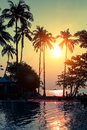 Amazing sunset on a tropical coast with palm trees. Nature.