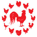 Silhouettes of rooster and chickens of different breeds isolated on a white background Royalty Free Stock Photo