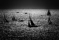 Silhouettes Of The Sailboats