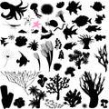 Silhouettes of sea animal Royalty Free Stock Photo