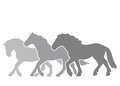 Silhouettes of three horses on the run Royalty Free Stock Photo