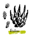 Silhouettes of traces of wild animals. Traces of a badger. Vector illustration