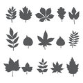 Silhouettes of tree leaves. Autumn leaf collection Royalty Free Stock Photo