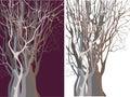 Z stromy podsaditý