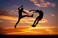 Silhouettes of two fighters on sunset fiery background. Royalty Free Stock Photo