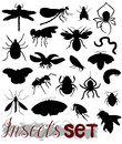 Silhouettes of various insects Royalty Free Stock Photo