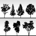 Silhouettetree Arkivbilder