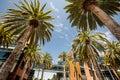 Silicon Valley, USA Royalty Free Stock Photo