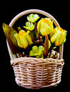 Silk flowers in wicker basket Royalty Free Stock Images